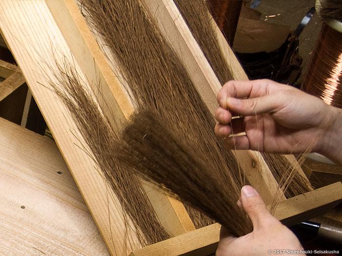 棕櫚箒-本鬼毛の選別