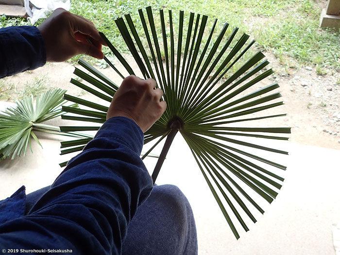 棕櫚葉のハエ叩き材料下準備