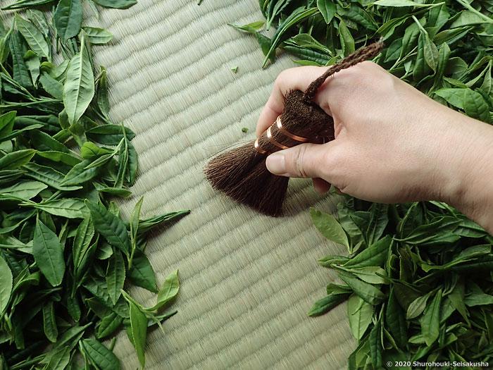 棕櫚皮荒神箒をお茶摘みで使う