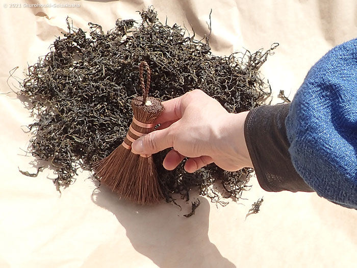 棕櫚荒神箒をお茶摘みで使う