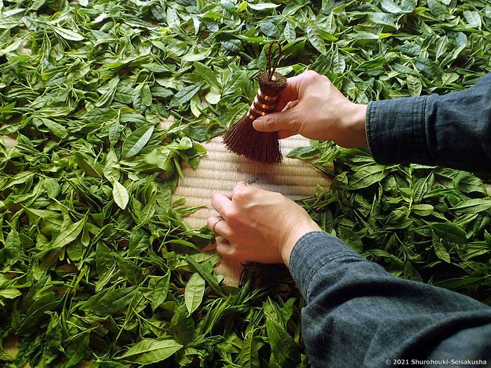 棕櫚箒-棕櫚荒神箒をお茶摘みで使う