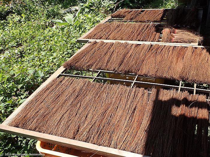 棕櫚箒-棕櫚鬼毛の毛ごしらえ
